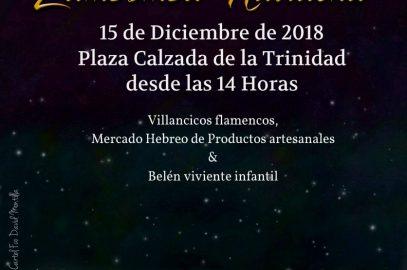 Zambomba navideña Real Hermandad de Nuestra Señora del Rocío de Málaga